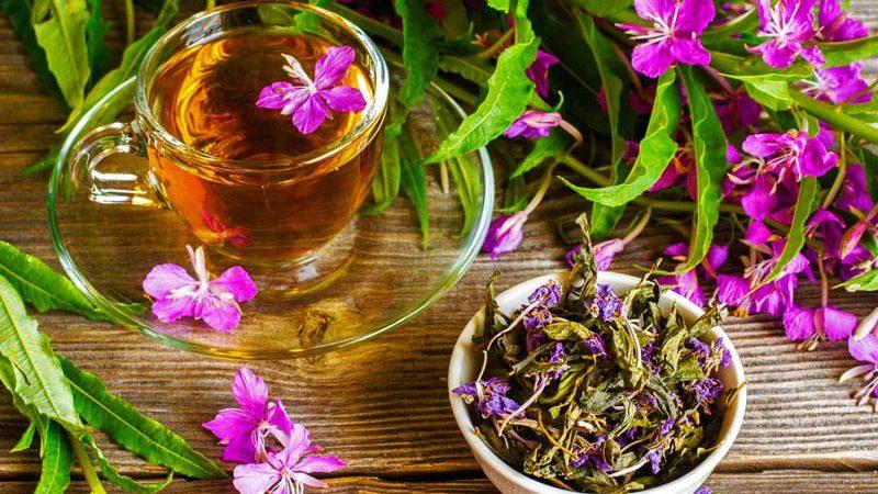 """""""Ivan čaj"""" fito čaj"""