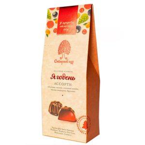 """Voćni žele bomboni u čokoladi """"Jagodenj"""""""